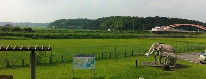 双子公園 is one of サイクリング.