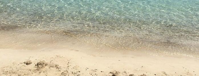 Bay Beach @ D-Hotel Maris is one of Aegean Coast.