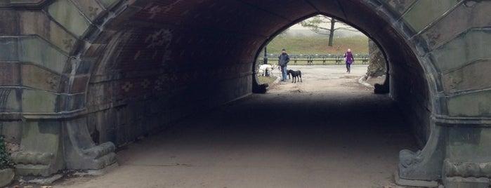 Greywacke Arch is one of NYC - Photography.