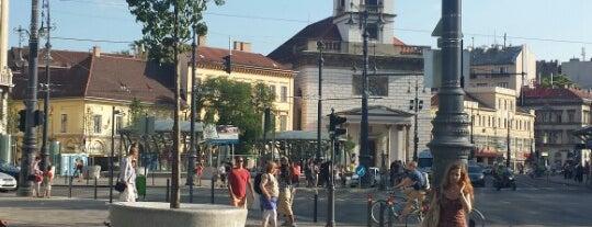 Kálvin tér M (47, 48, 49) is one of Budai villamosmegállók.