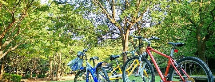 高尾山公園 is one of 日本の都市公園100選.