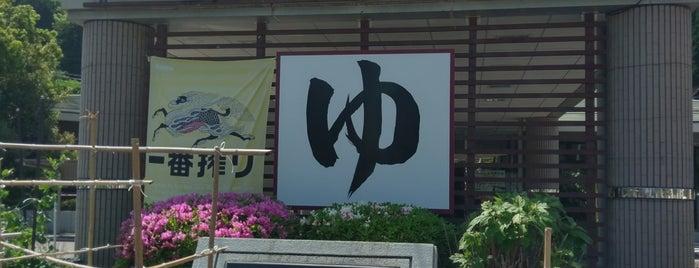下呂市飛騨金山温泉 湯ったり館 is one of 日帰り温泉.