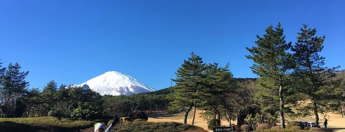 Fuji Kokusai Golf Club is one of Top picks for Golf Courses.