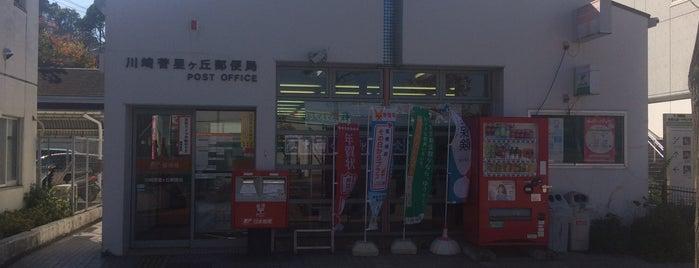 川崎菅星ヶ丘郵便局 is one of 近所.