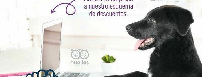 Huellas Pet Shop is one of Pomadas Verdan.