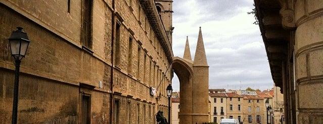 Faculté de Médecine is one of visita a Montpellier.