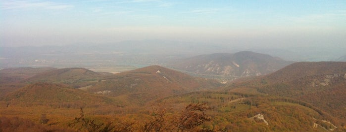 Rezső kilátó is one of Budai hegység/Pilis.