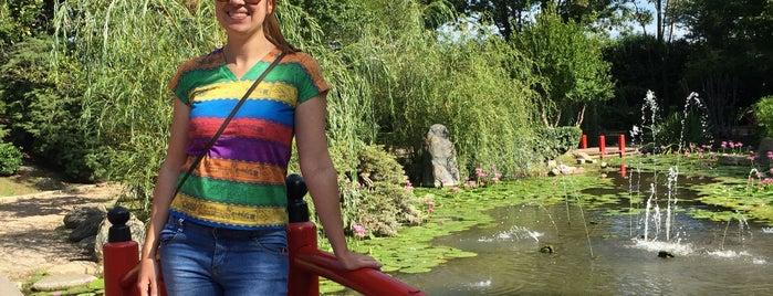 Jardín Japonés de Escobar is one of AL AIRE LIBRE!.