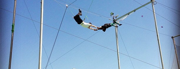 Trapeze School New York is one of Waldo NYC: New York City for Teens.