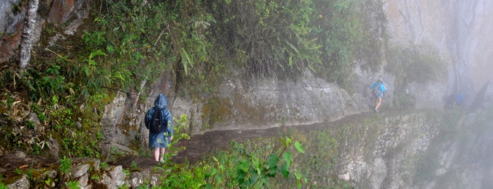 Camino Inca / Desde El Andén ( 30km Machu Picchu Pueblo) is one of Perú.