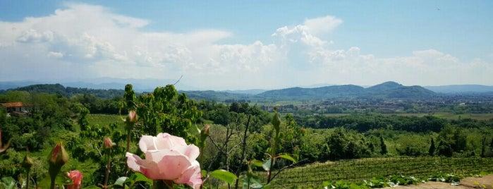 Abbazia Di Rosazzo is one of I miei luoghi.