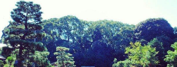崇光天皇 大光明寺陵 is one of 天皇陵.