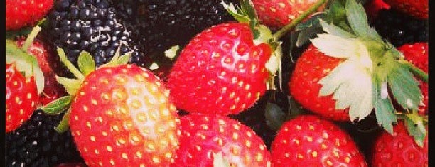 Kebun Strawberry is one of All-time favorites in Indonesia.