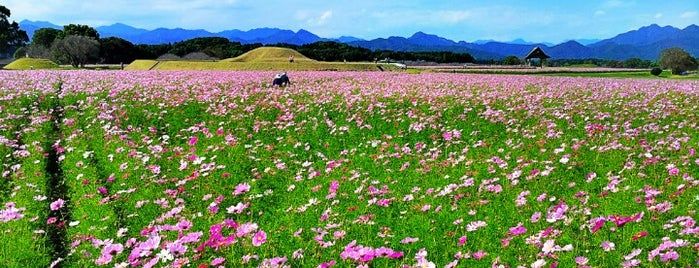 西都原古墳群 is one of 日本の都市公園100選.