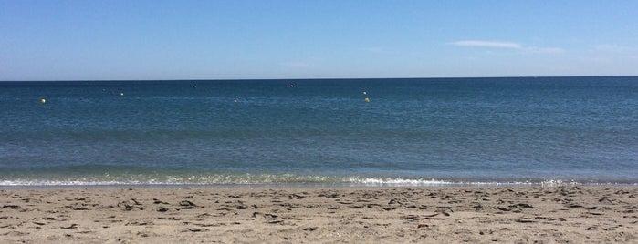 Playa de Sotogrande is one of Alex.