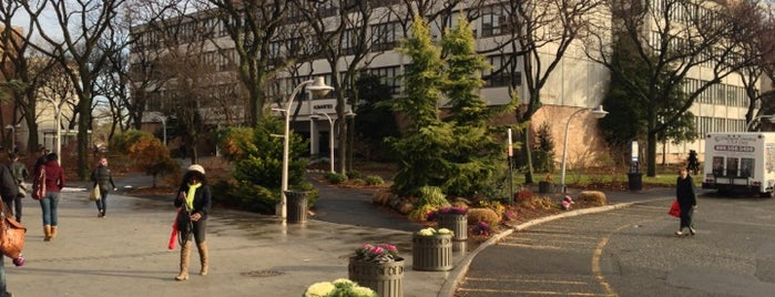 Queensborough Community College is one of NYC Hurricane Evacuation Centers.
