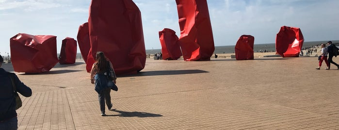 Arne Quinze is one of Oostende.