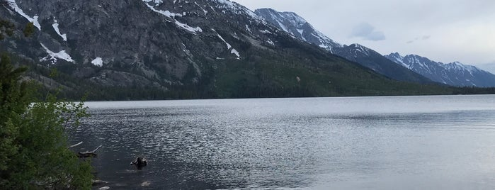 Jenny Lake is one of Most Beautiful Places in America.