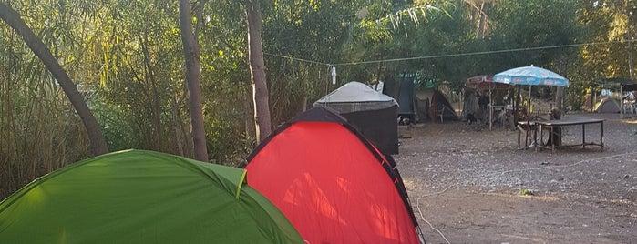 Adrasan Çadır Kampı is one of Kamp.
