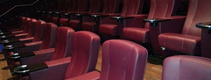 Cobb Village 12 Cinemas is one of The Best Movie Theaters in the area.