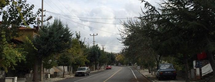 Binbirevler is one of Isparta'nın Mahalleleri.
