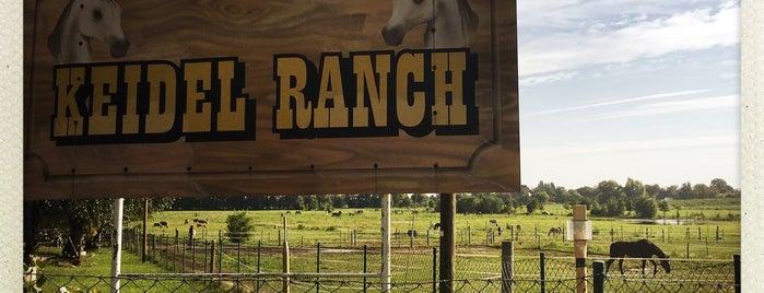 Keidel Ranch is one of Brandenburg Blog.