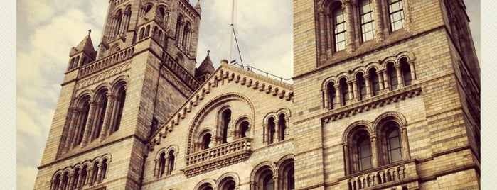 Natural History Museum is one of London's Best Museums - 2013.