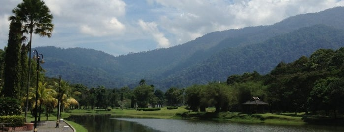 Taiping Lake Garden is one of All-time favorites in Malaysia.