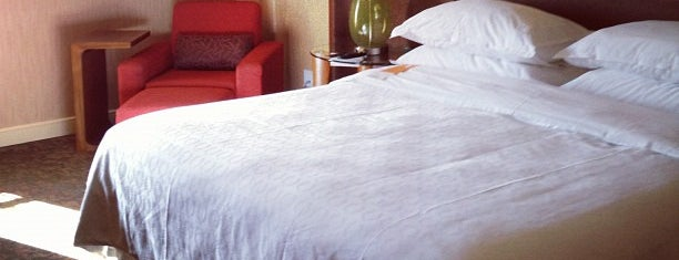 Sheraton Albuquerque Airport Hotel is one of Hotel / Casino.