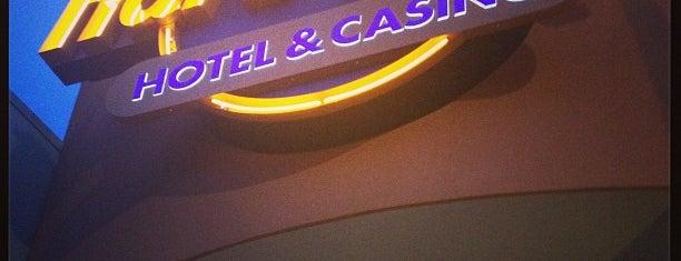 Seminole Hard Rock Hotel & Casino is one of Princess' Tampa Hot Spots!.