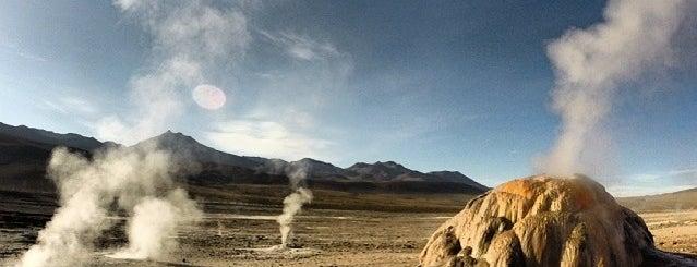 Geiser del Tatio is one of Atacama.