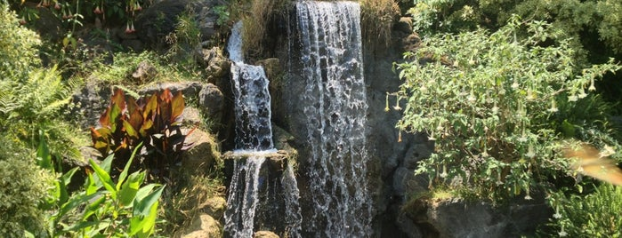 Los Angeles County Arboretum and Botanic Garden is one of Attractions to Visit.