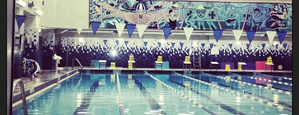 McBurney YMCA is one of The Coolest Pools in NYC.