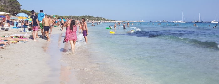 Playa De Las Salinas is one of Ibiza.