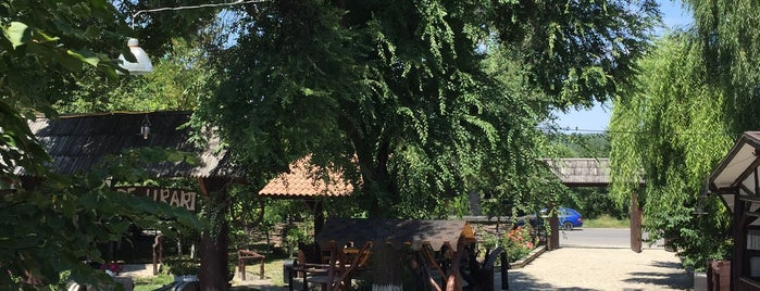 La Bădiș is one of Exploring Moldova.