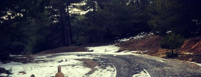 Spil Dağı is one of istiyorumgidicem!!.