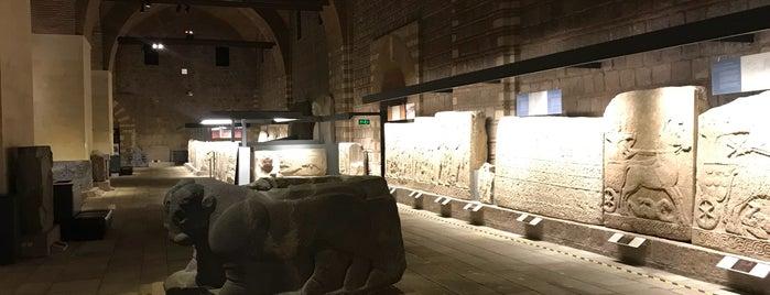 National History Museum is one of istiyorumgidicem!!.