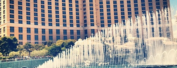 Bellagio Hotel & Casino is one of things done with the family and doug.