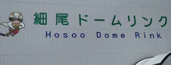 細尾ドームリンク is one of スケートリンク.