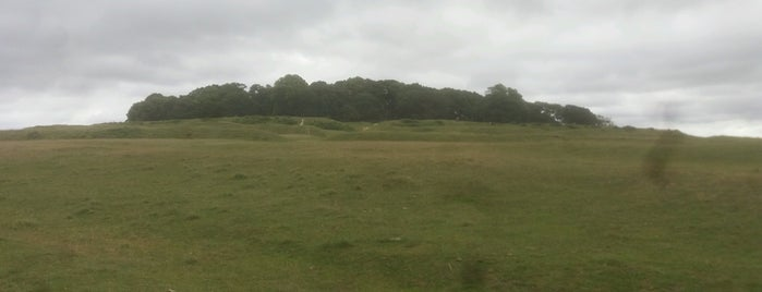 Badbury Rings is one of Shelbyart's Favourite Places.