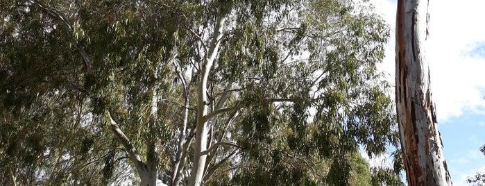 South Parklands is one of South Australia (SA).
