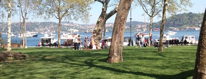Bebek is one of Istanbul - En Fazla Check-in Yapılan Yerler-.