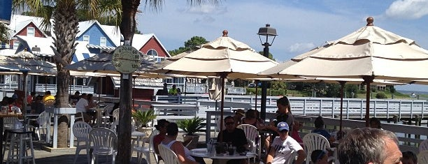 The Salty Dog Cafe is one of Best Ocean spots.