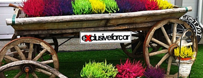 ExclusiveForCar.com is one of 1.
