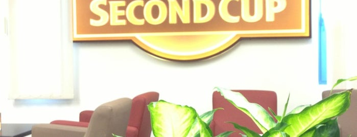Second Cup is one of Dubai Food.