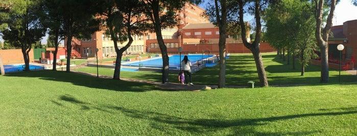 piscinas y c d m de zaragoza