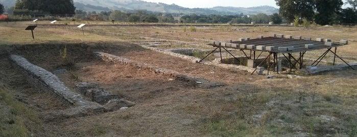Foro della città romana di Suasa is one of Tutto Castelleone di Suasa.
