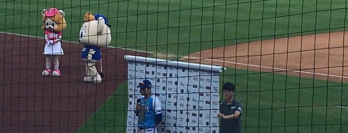 Daegu Samsung Lions Park is one of KBO Baseball Stadiums for Triple play badge.