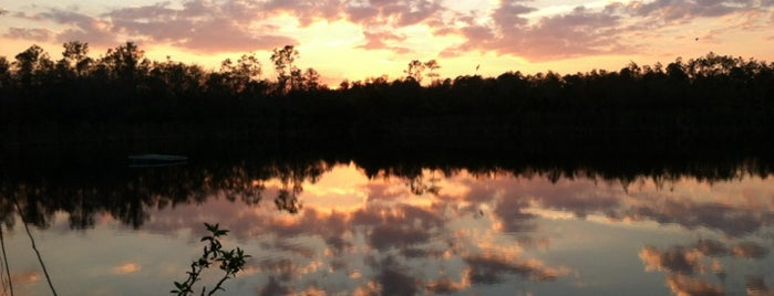 Six Mile Cypress Slough Preserve is one of Inspiration.