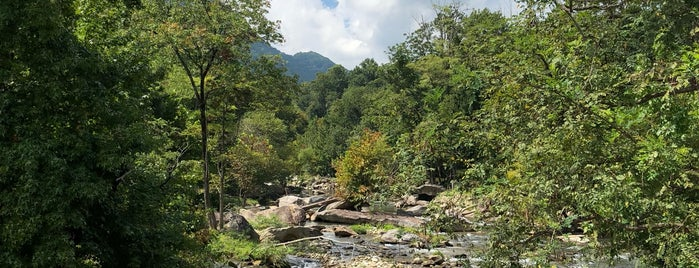 Hickory Nut Gorge Brewery is one of Asheville.